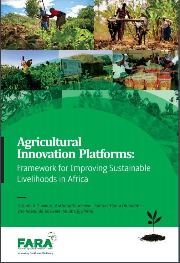 Agricultural Innovation Platforms: Framework for Improving Sustainable Livelihoods in Africa.