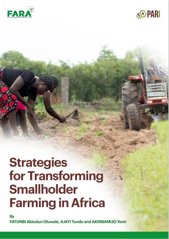 Strategies for Transforming Smallholder Farming in Africa – OFatunbi