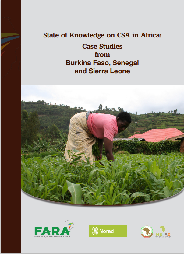 State of knowledge on CSA : Case studies from Burkina Faso, Senegal, Sierra Leone