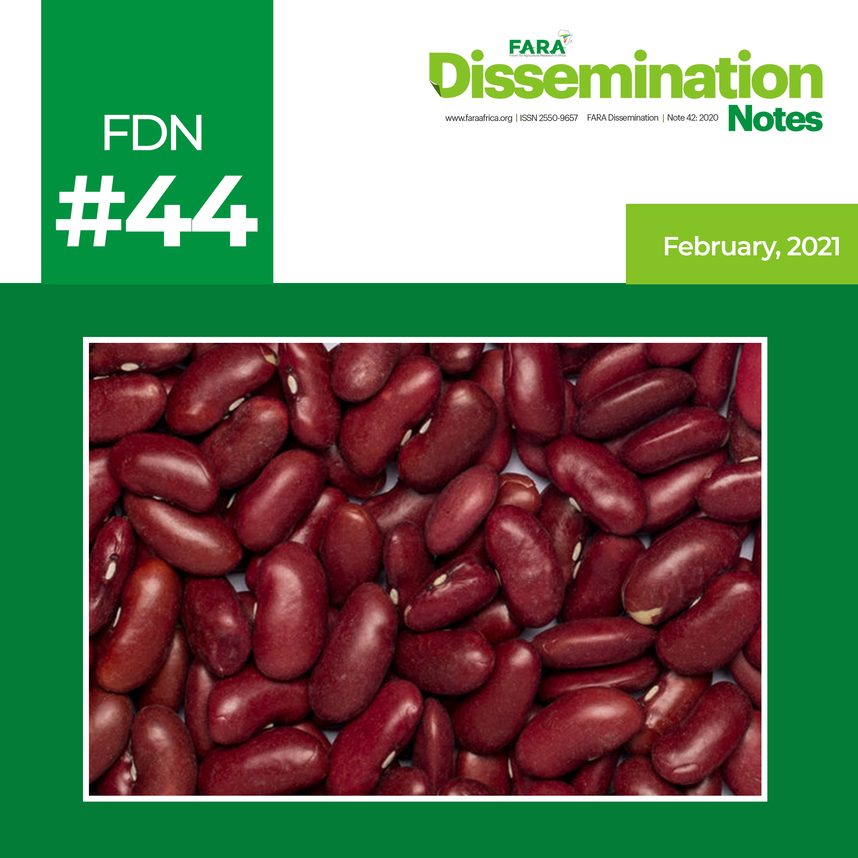 FDN 44_2021 – The case of High Iron Beans Technology -FARA-TAAT