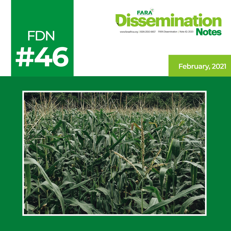 FDN 46_2021 – The case of Maize Technology -FARA-TAAT