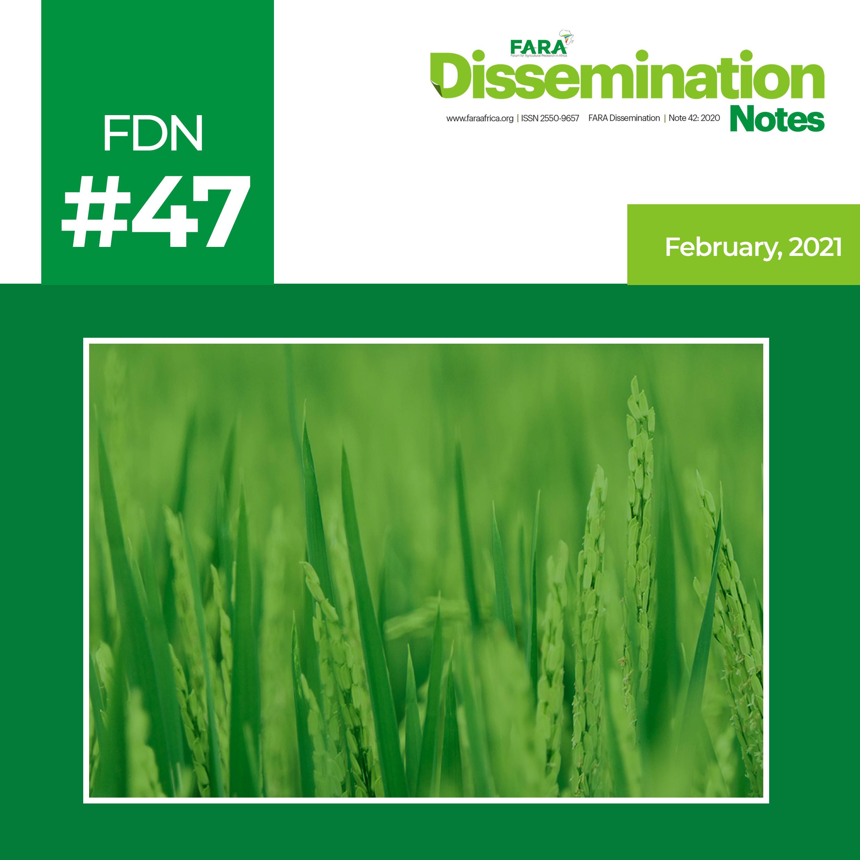 FDN 47_2021 – The case of Rice Technology -FARA-TAAT
