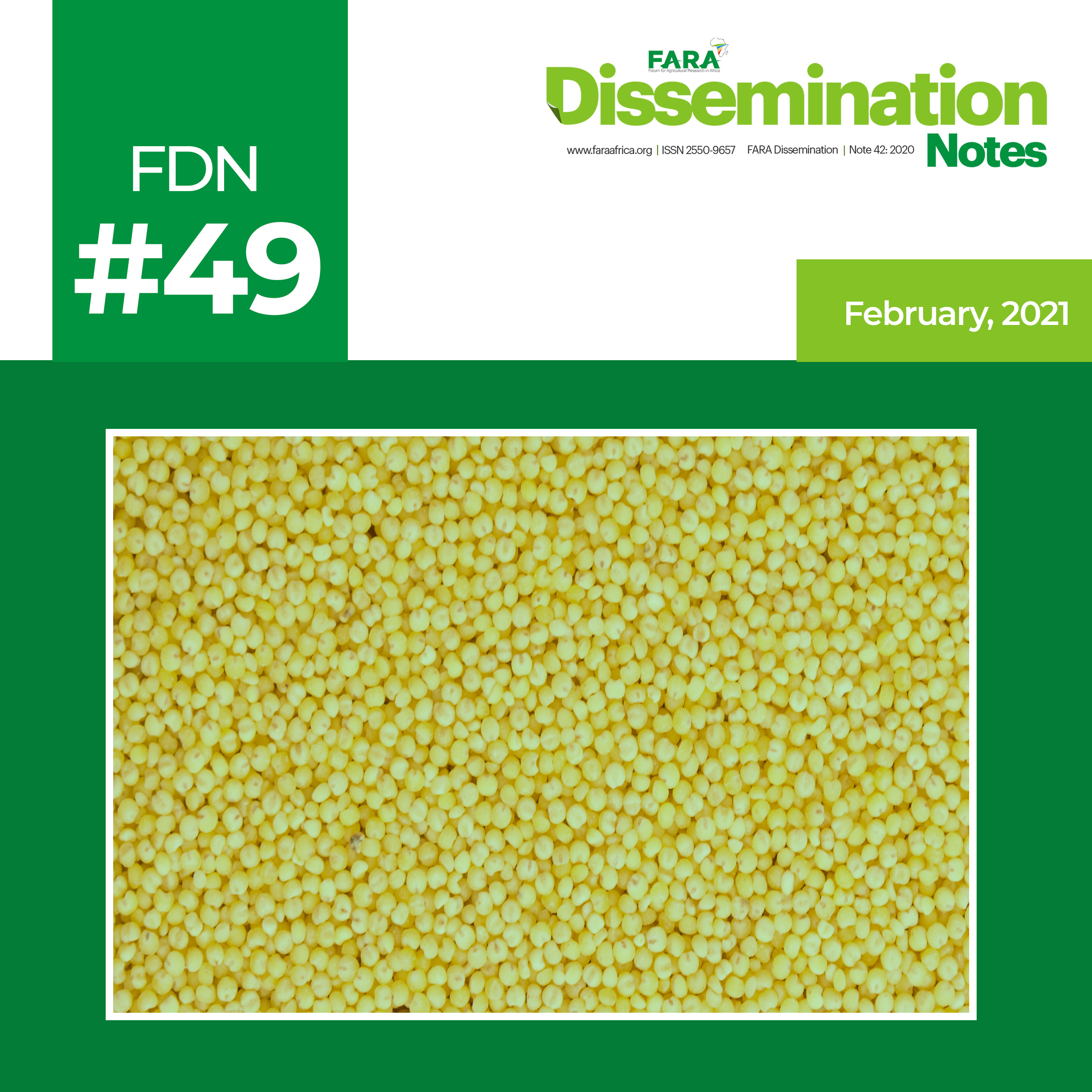 FDN 49_2021 – The case of Sorghum and Millet Technology -FARA-TAAT
