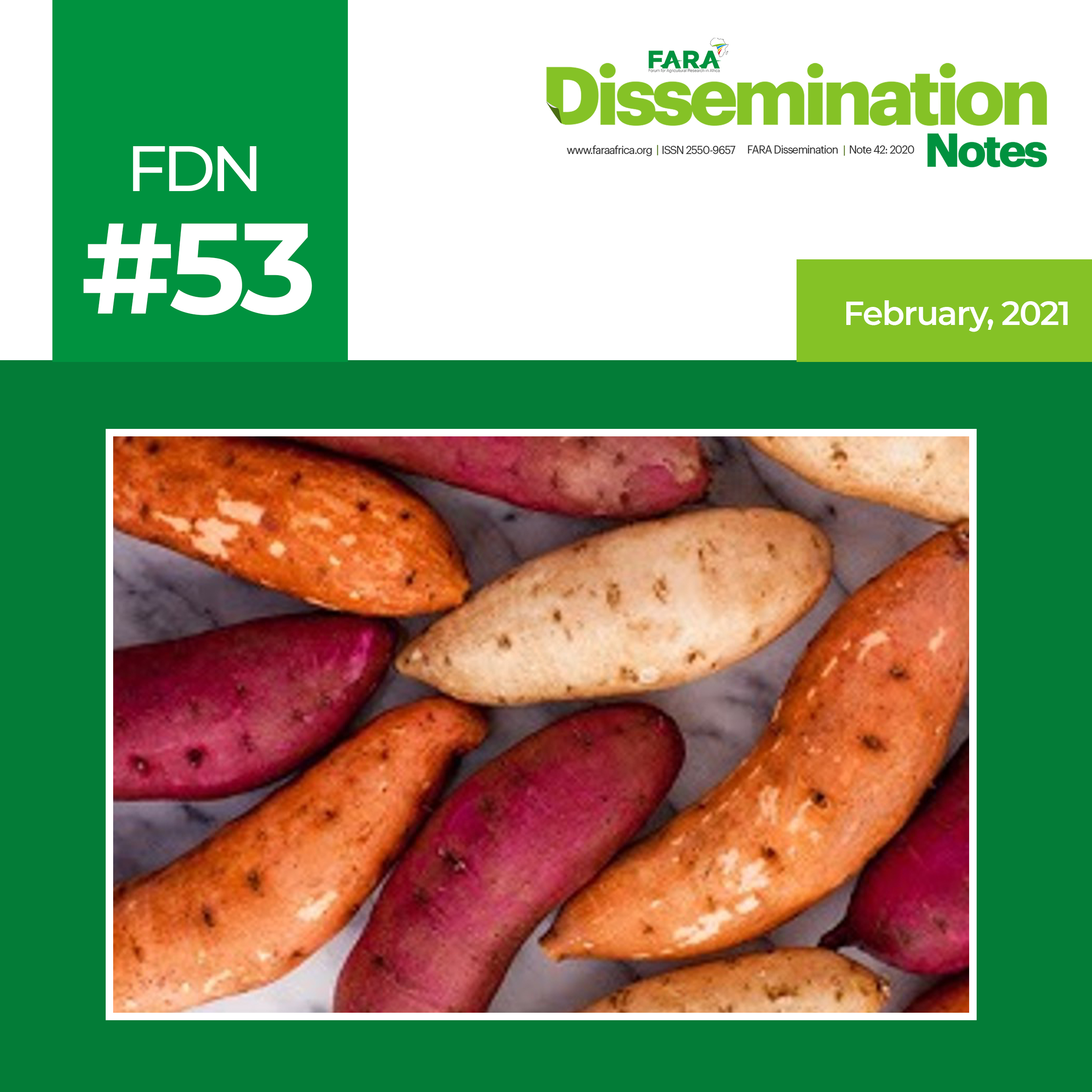 FDN 53_2021 – The case of Orange-Fleshed Sweet Potato (OFSP) Technology -FARA-TAAT
