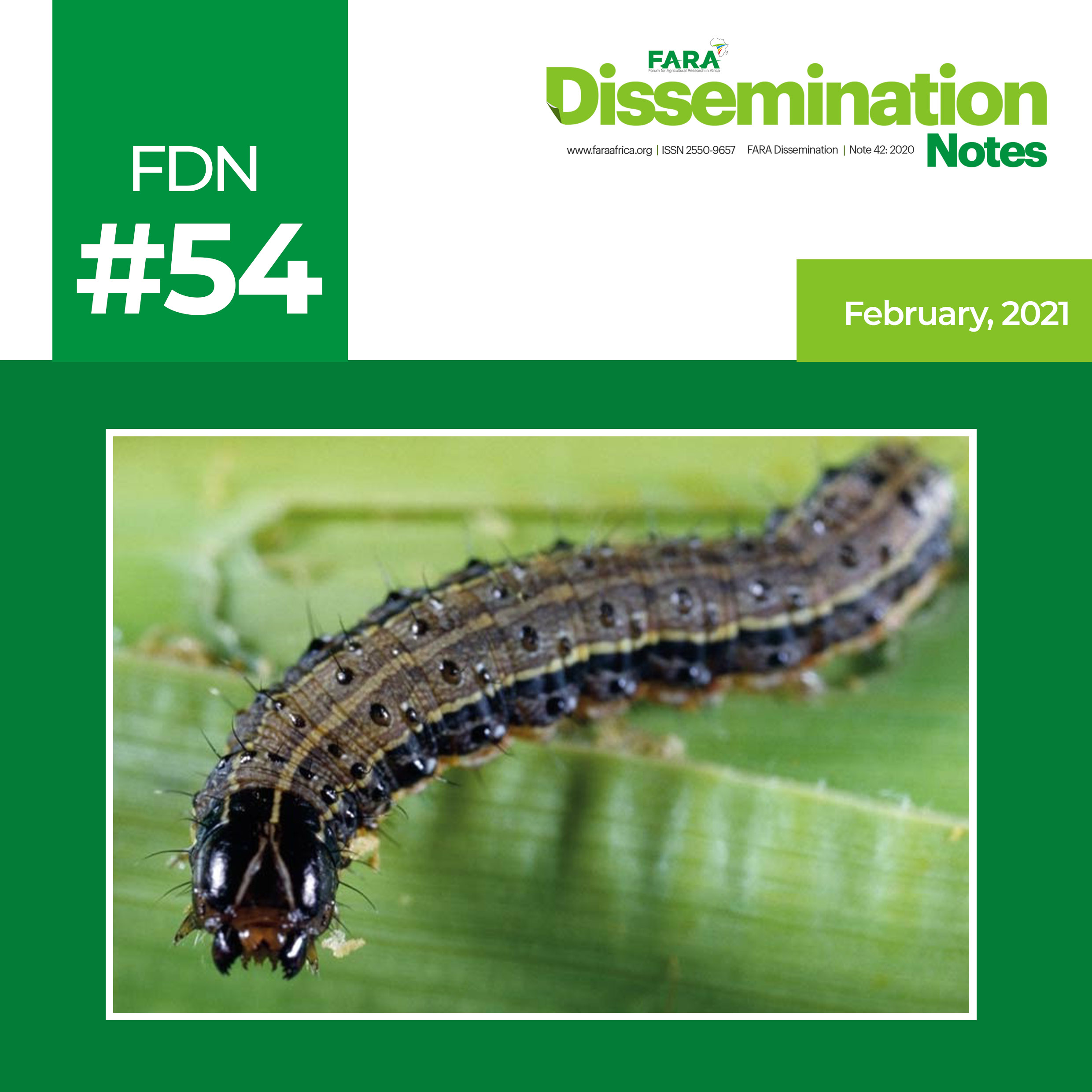 FDN 54_2021 – FAW identification illustrated guide -TAAT